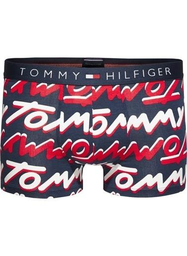 Tommy Hilfiger Erkek Trunk Bold Type Boxer UM0UM00866 Renkli